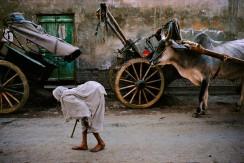 INDIA. Vrindavan. 1995. Widow.